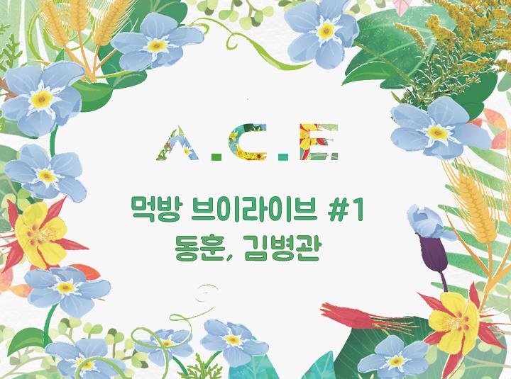 MV 100만뷰 기념 A.C.E 먹방 #1 동훈,김병관