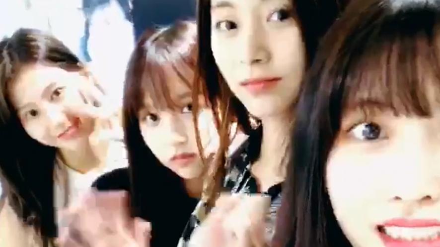 [TWICE] 좋은건 크게크게! 모모링도 크게크게🍑 (MOMO's V in new JYP)