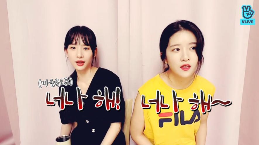 [WJSN] 노란 옷 입은 사람과 그 옆에 검은 옷 입은사람의 추천쏭🎶 (Exy&SeolA's music recommendation)