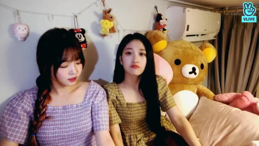 🌧비오는 날 숙소위의 포뇨(feat.셔니)☁️💦