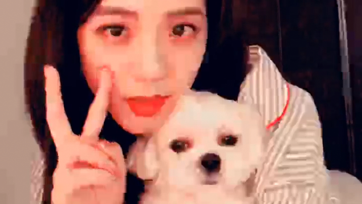 [BLACKPINK] 김치츄에게 제 전부를 양도합니다...💞 (Jisoo finding BLACKPINK's sticker on V)