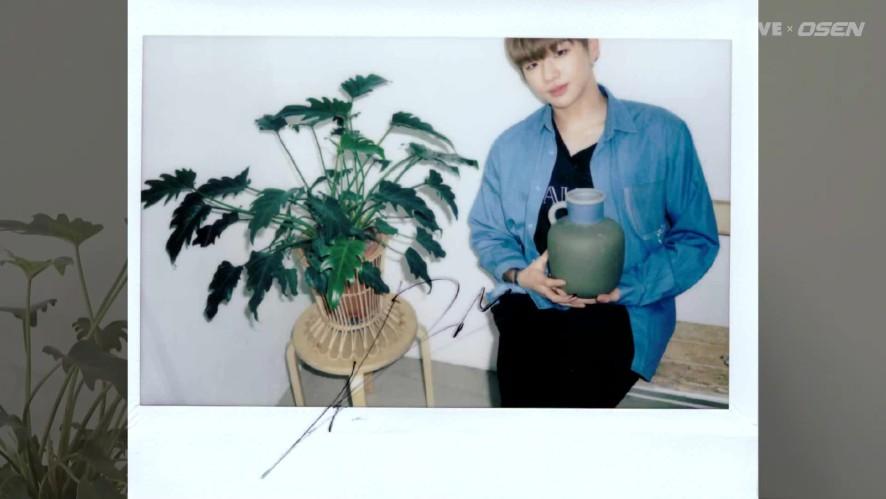 Wanna One 워너원 'Star Road' 깜짝 선물 대방출