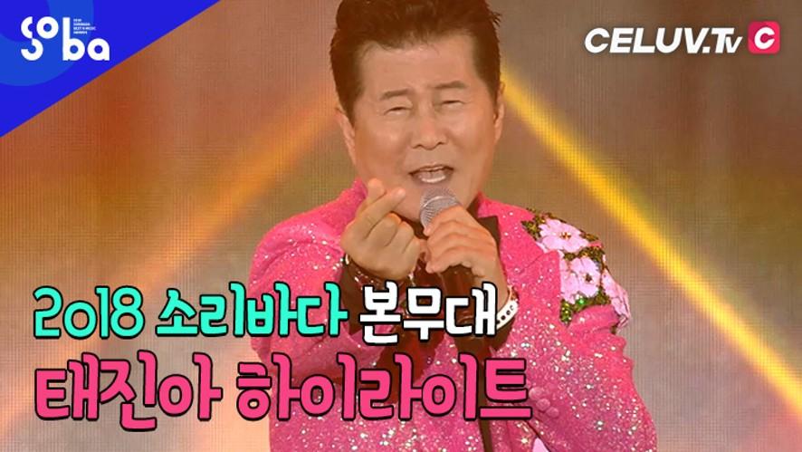 [셀럽티비/2018SOBA] 본무대, '태진아' 하이라이트