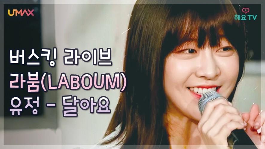 [라붐(LABOUM)] 리더 유정의 달콤한 솔로 무대, 달아요(박정현) ♬ Sweet(Lena Park) @버스킹다이어리