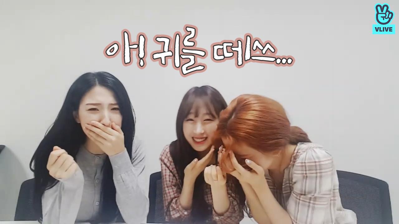 [WJSN] 아름다운 강산에~ 아! 귀를떼쓰👂🏻(αγυρτης nameing PLEASE point choreography)