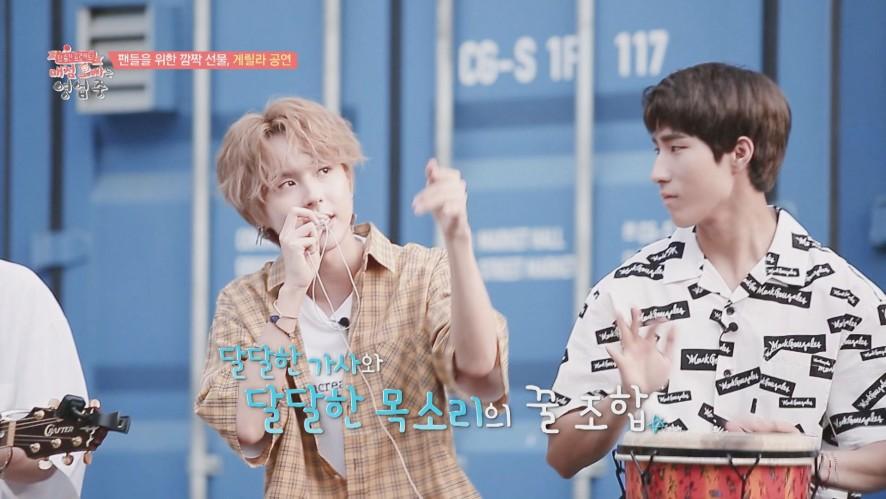 [ONEUS(원어스) & ONEWE(원위)] '매점오빠는 영업 중' 8화 - 팬들을 위한 깜짝 선물, 게릴라 공연!