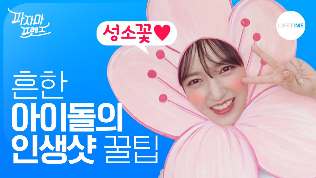 (비글주의) 레드벨벳 조이, 우주소녀 성소의 흔한_인생샷_꿀팁.avi [파자마 프렌즈]