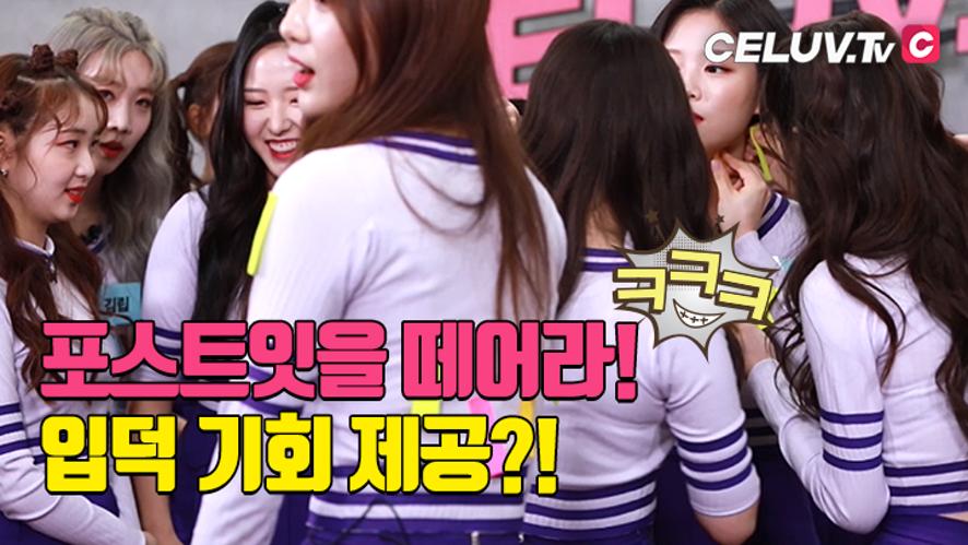 [셀럽티비/아임셀럽] 이달의 소녀, 입덕가이드 '포스트잇을 떼어라!' 과연 승리팀은?