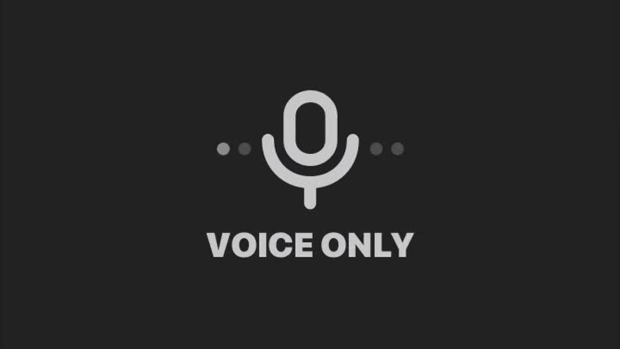Voice only
