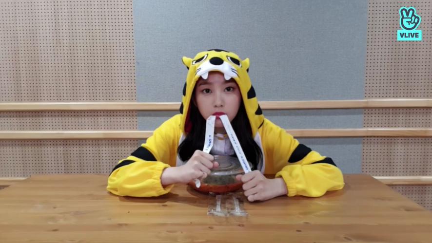 죠랑이의 식사시간!