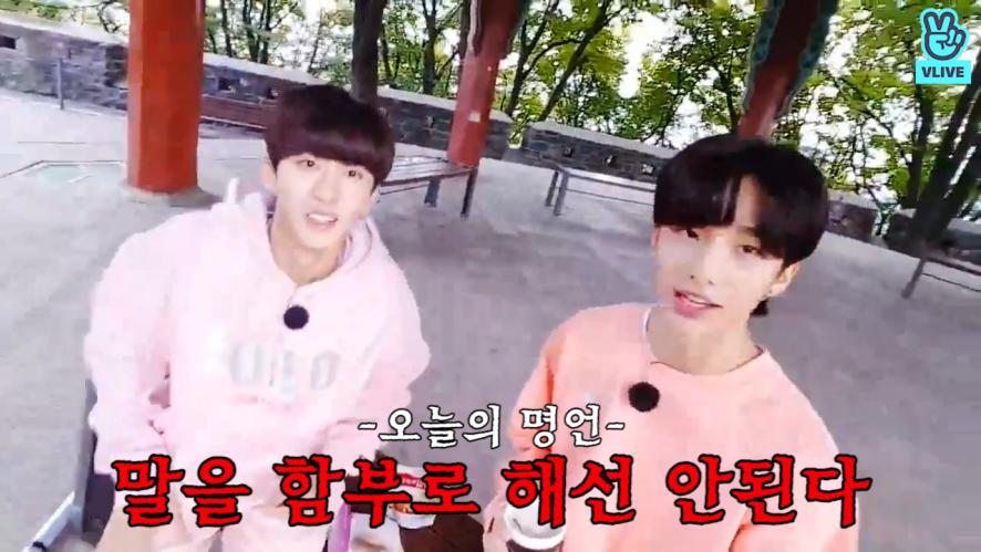 [Stray Kids] 핑크뽀이들 의문의 방송에 스테이들 (꿈뻑)(귀여워)(꿈뻑) (Changbin&Hyunjin's mysterious V)