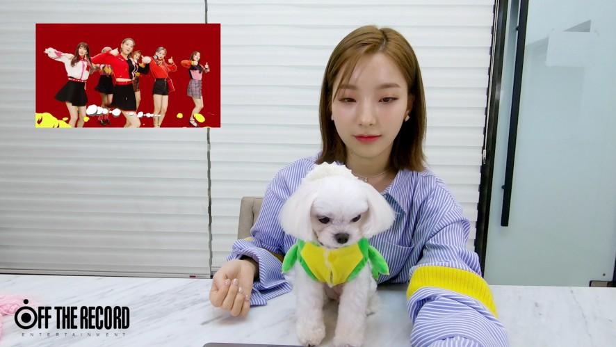 새롬이와 여르미의 [LOVE BOMB] MV Reaction