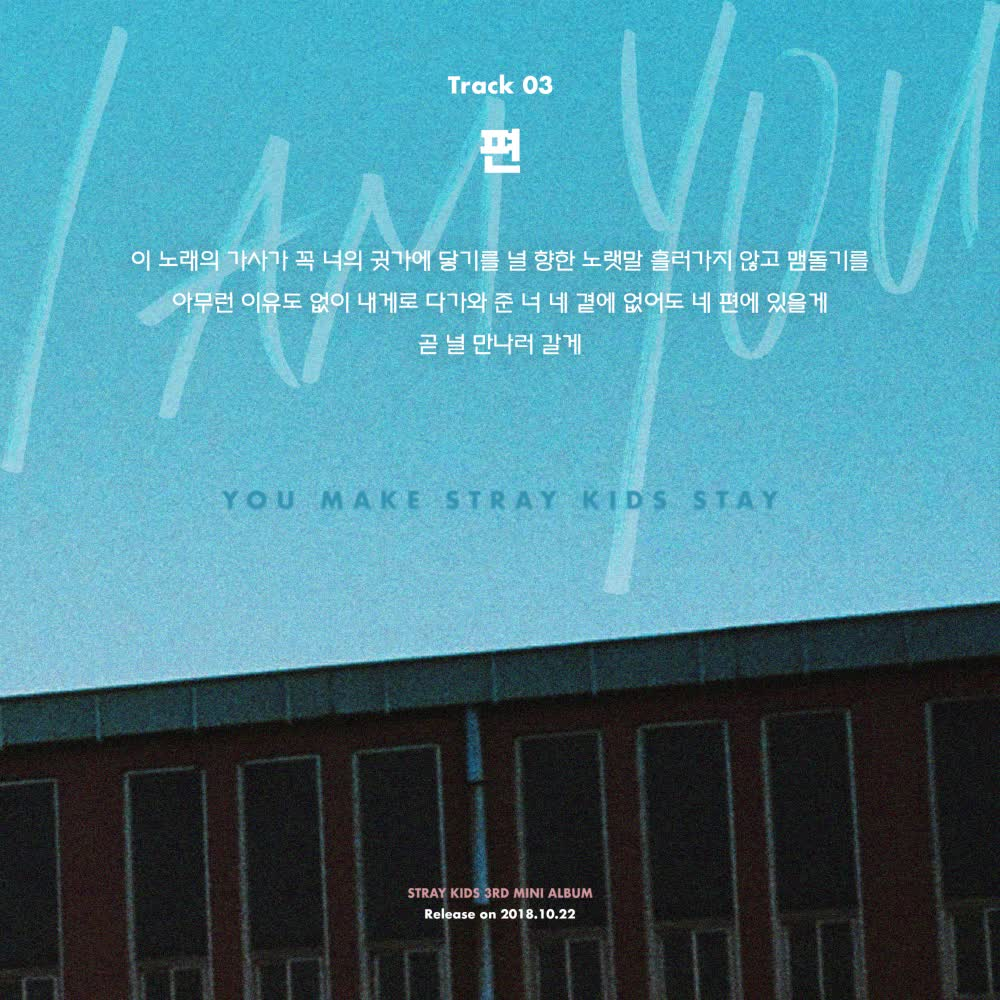 "Stray Kids(스트레이 키즈) <I am YOU> Inst. Lyric Card 3 ""편"""