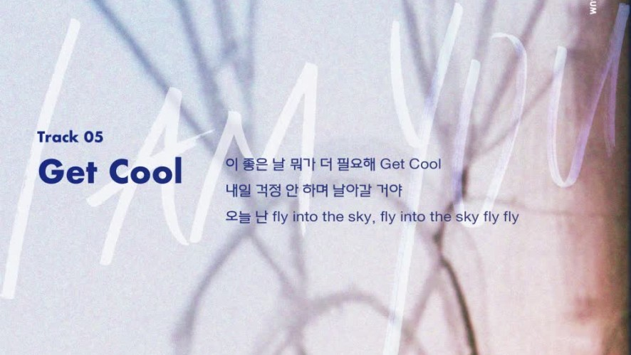 "Stray Kids(스트레이 키즈) <I am YOU> Inst. Lyric Card 5 ""Get Cool"""