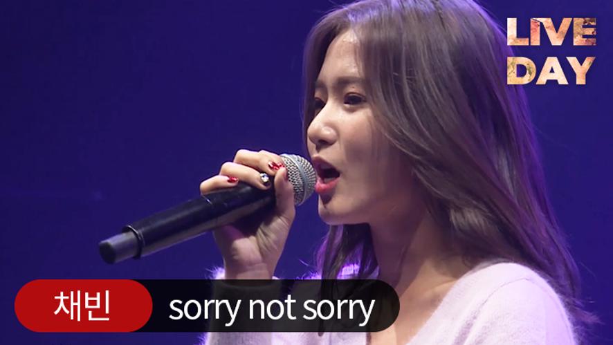 [셀럽티비/라이브데이] 채빈(네이처) 'sorry not sorry'