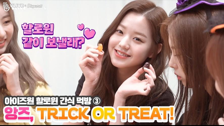 """[ⓓxV] """"앙즈, TRICK OR TREAT!"""" 할로윈 간식 먹방 ③ (아이즈원)"""