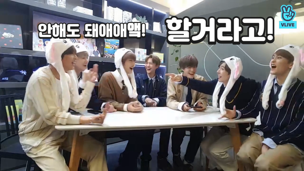 [NCT] 말랑뽀짝토깽이들 애교 할거라고오옼!!!!🐰(NCT DREAM with cute bunny hats)