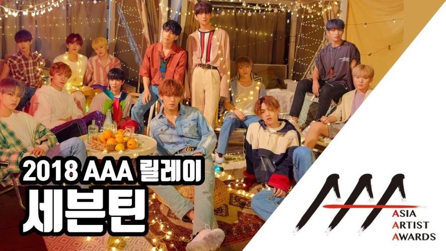 릴레이 04. 반짝반짝 빛나는 'SEVENTEEN' 세븐틴 '2018 AAA'