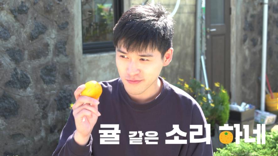 귤 같은 소리 하네 5부 【橘子的声音】5集