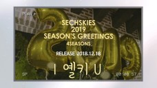 SECHSKIES - 2019 SEASON'S GREETINGS