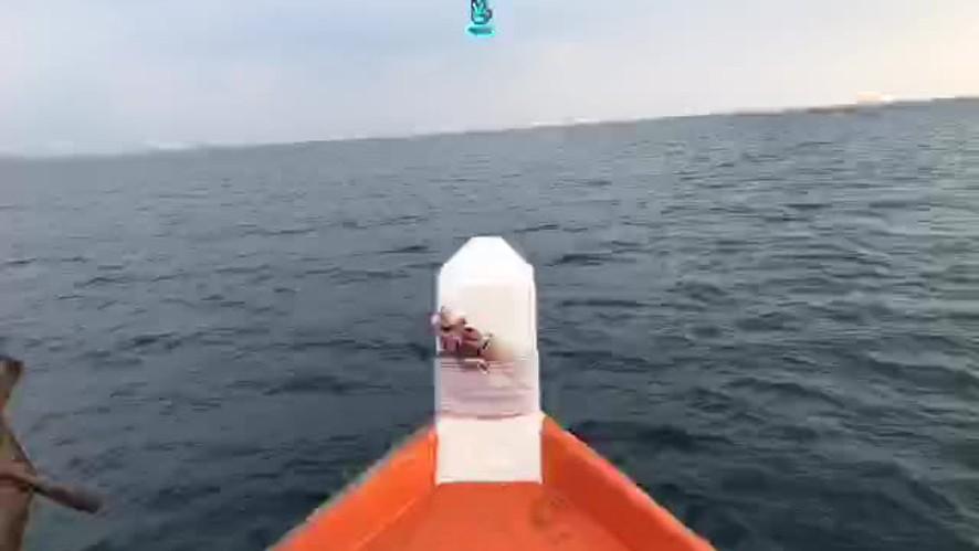 [열두달] 태국 바다 구경하기🐟🌊