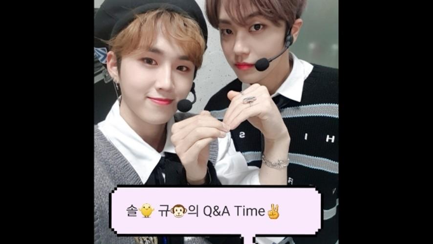[Now_7OC] | 솔🐥 규🐵의 Q&A Time~다 물어봐