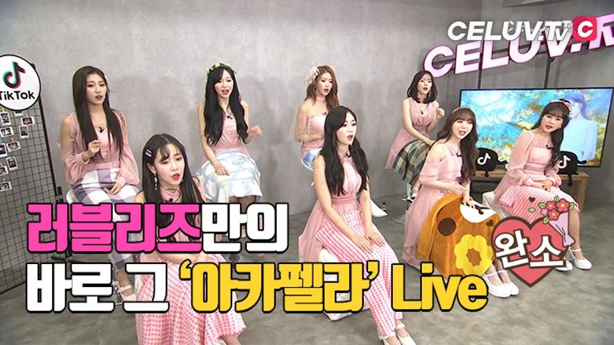 [셀럽티비/아임셀럽] 러블리즈, 고이 묵혀둔 '아카펠라' Live