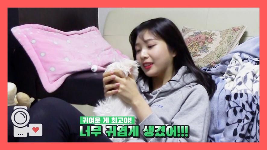 레드벨벳 아이컨택캠 (EYE CONTACT🎥) S2 EP2. '조이 The햇님사랑꾼'