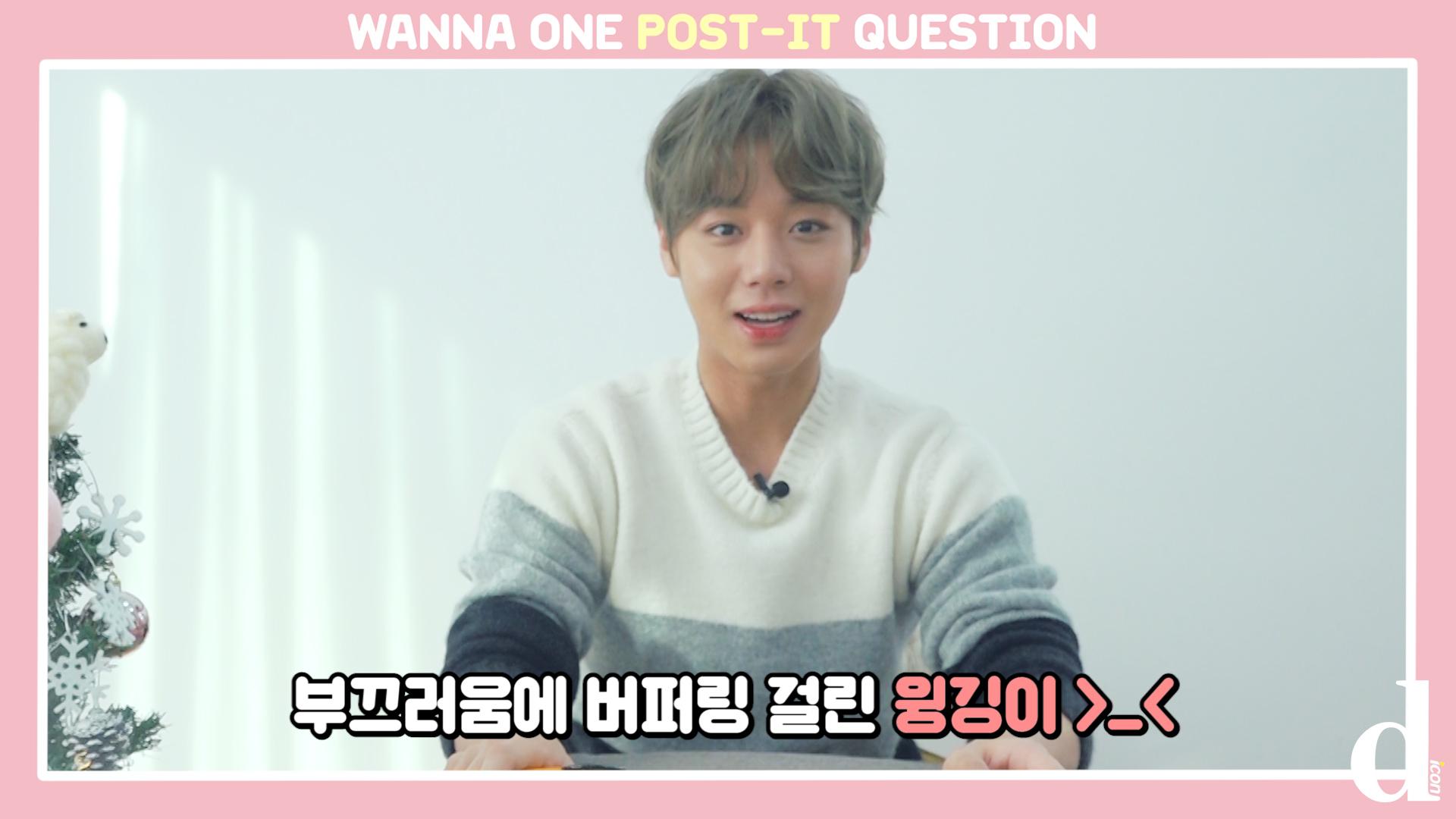 "[D아이콘] ""팬바보 윙깅이"" 포스트잇 Q&A (박지훈: 워너원)"