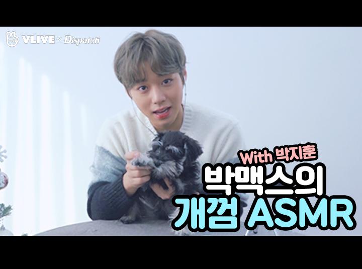 "[ⓓ xV] ""박맥스의 개껌 ASMR"" (박지훈:워너원)"