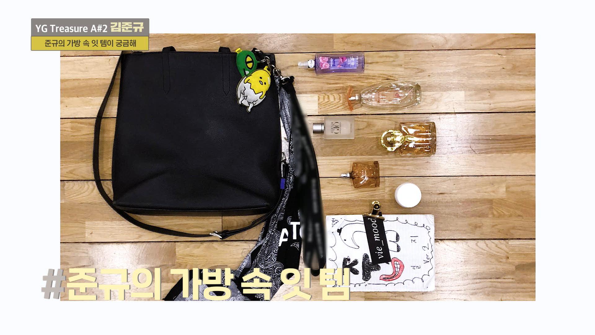 [IN MY BAG] 김준규 <KIM JUNKYU> l YG보석함