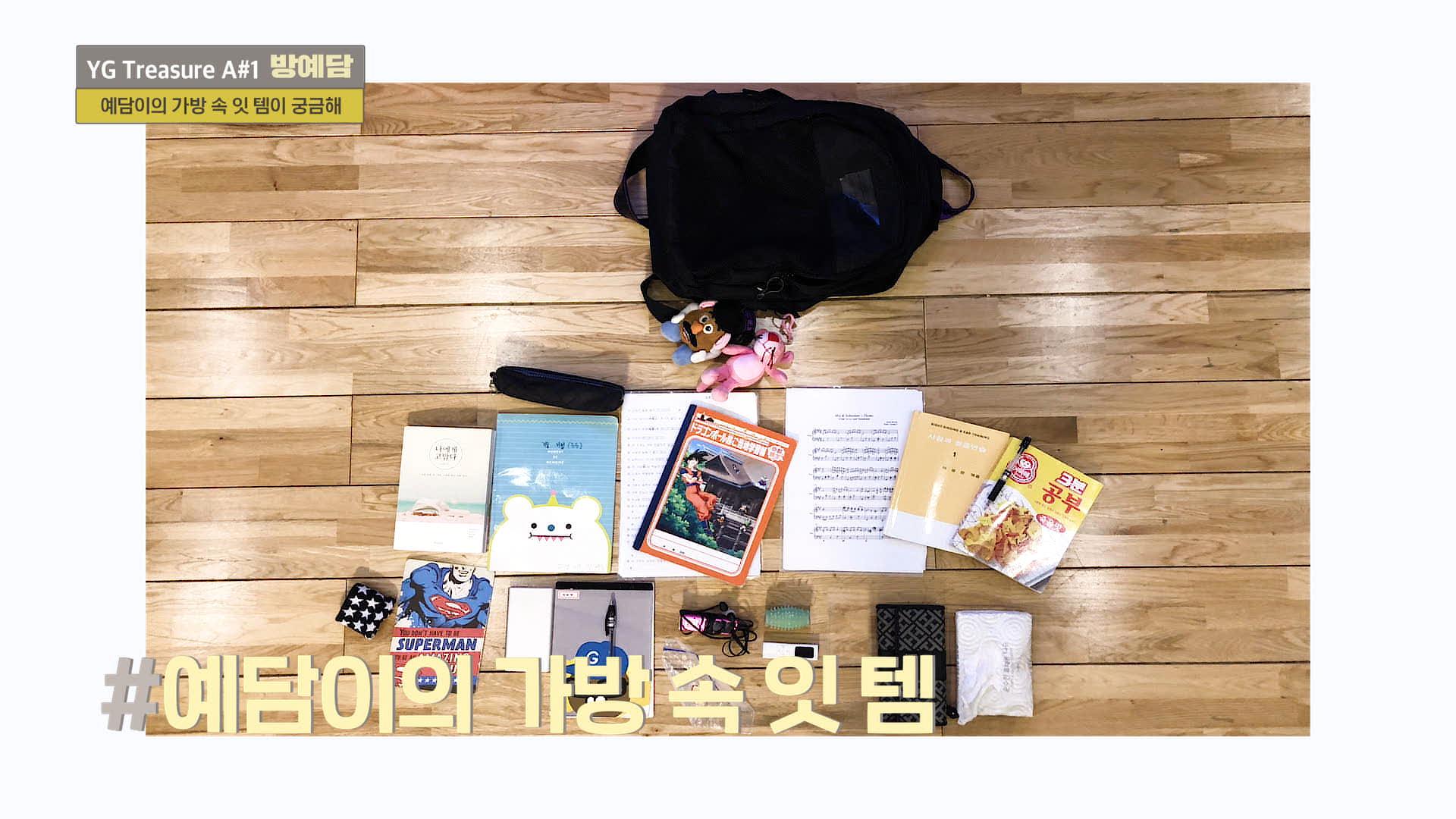 [IN MY BAG] 방예담 <BANG YEDAM> l YG보석함