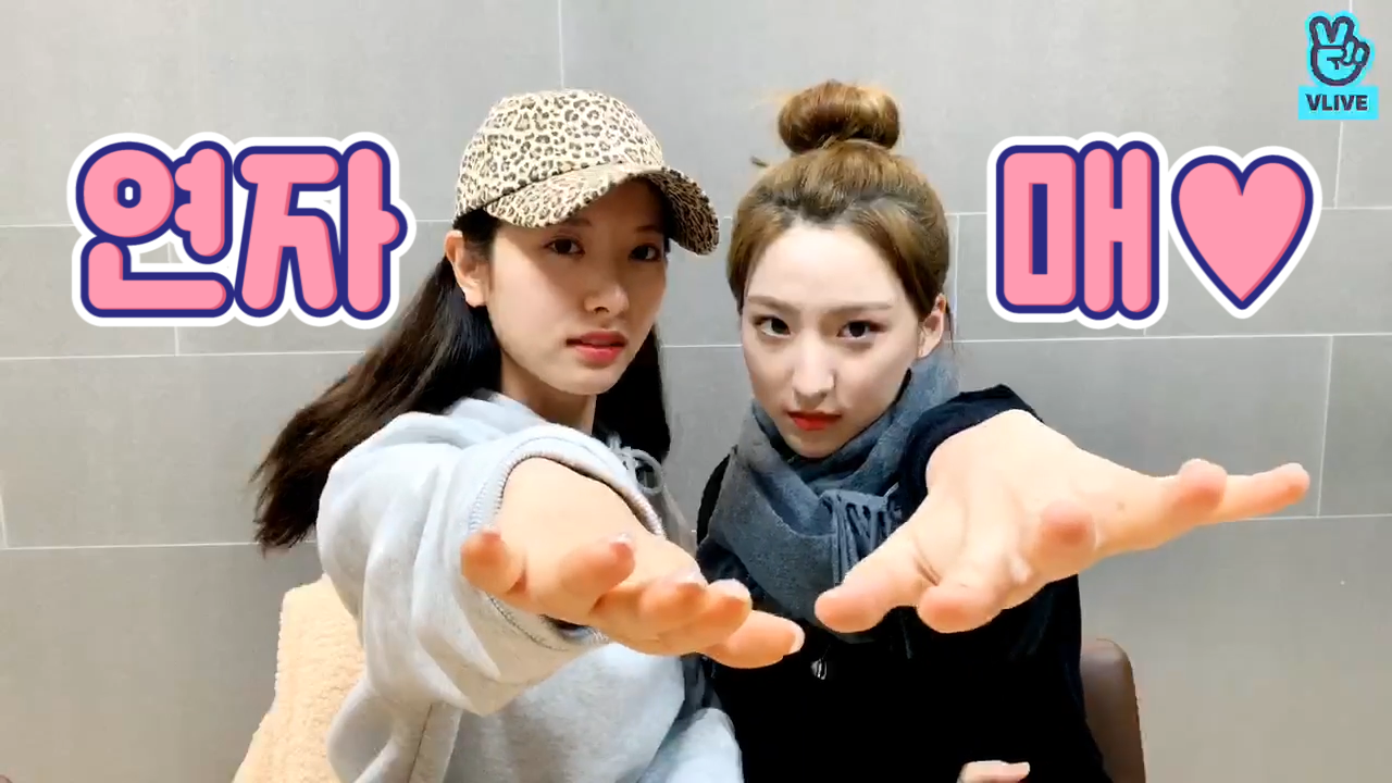 [WJSN] 새해에는 붉은 태양처럼 우주최강사랑스러운 연자매 하시길 기원합니다🌞(Yeon Sister's comeback spoiler)