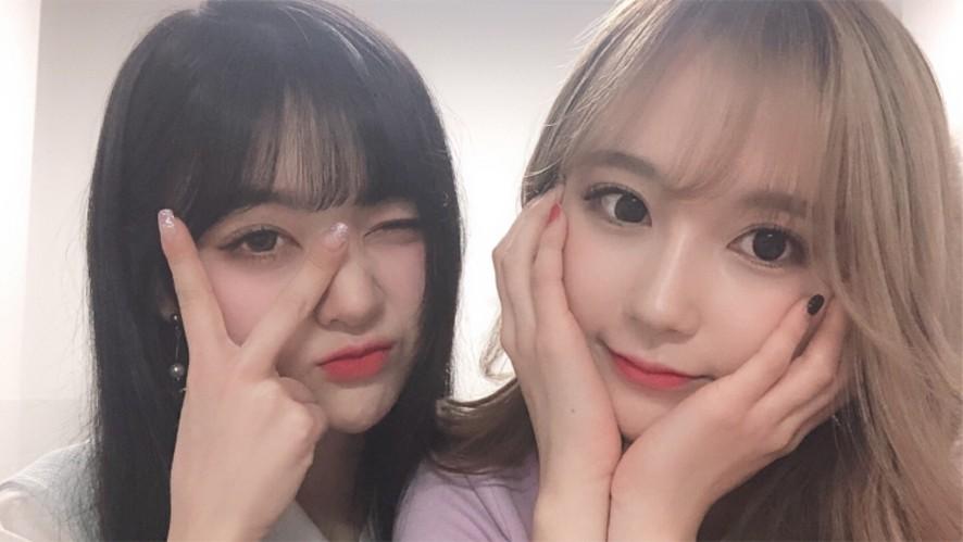 가을 세빈의 심야의 라이브 먹방 (feat. 일본)