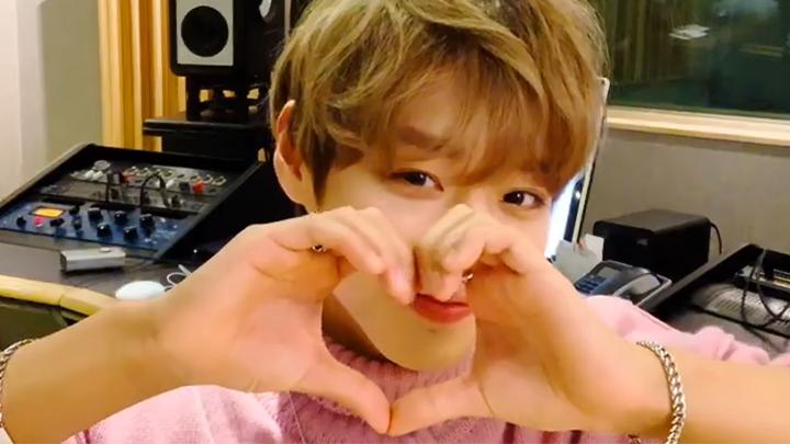 [PARK JI HOON] 사랑스러움을 인간화하면 박먕먕이라는게 학계의 정설💕(Jihoon communicating with fans)