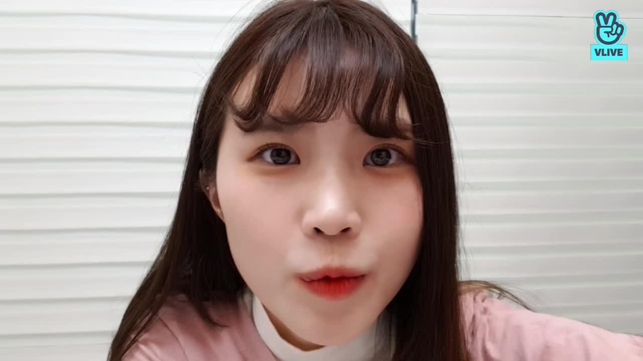 핑크핑크분홍분홍 🍭2