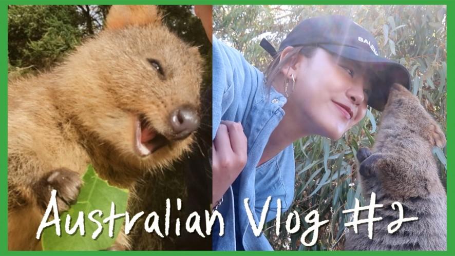 [엠마뷰티 EMMA BEAUTY] Australian VLOG#2 세상에서 가장 행복한 동물 쿼카와 행복한 하루 보내기! 로트네스트 섬 투어