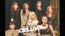[I'm Celuv] 2월 14일 'CLC(씨엘씨)' 방송 예고 (Celuv.TV)