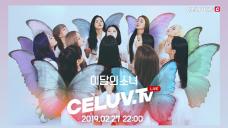 [I'm Celuv] 2월 27일 '이달의 소녀(LOONA)' 방송 예고 (Celuv.TV)
