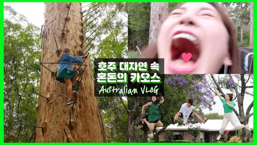[엠마뷰티 EMMABEAUTY] Australian VLOG #3 호주 대자연 속 혼돈의 카오스 ㅋㅋㅋ  #꿀잼각 삼남매 호주여행