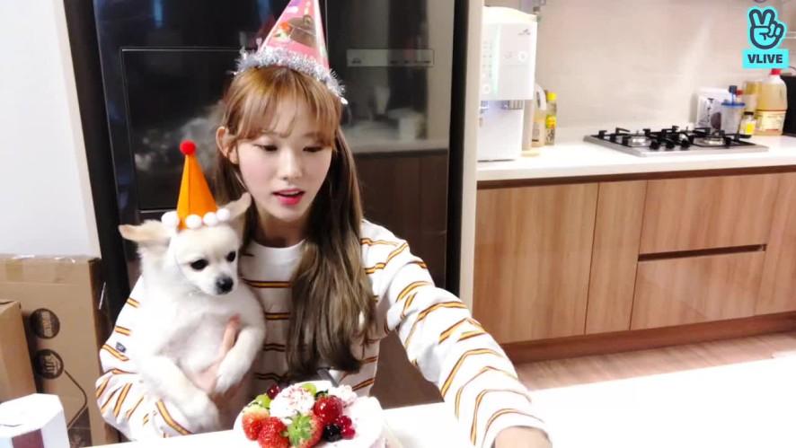 [루다] Welcome LUDA's Birthday Party🎉