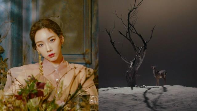 TAEYEON 태연 '사계 (Four Seasons)' MV