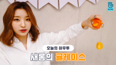[V PICK! HOW TO in V] 새롬의 귤케이스🍊 (HOW TO MAKE SAE ROM's AirPods case)