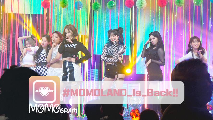 [모모그램] #MOMOLAND_Is_Back!!