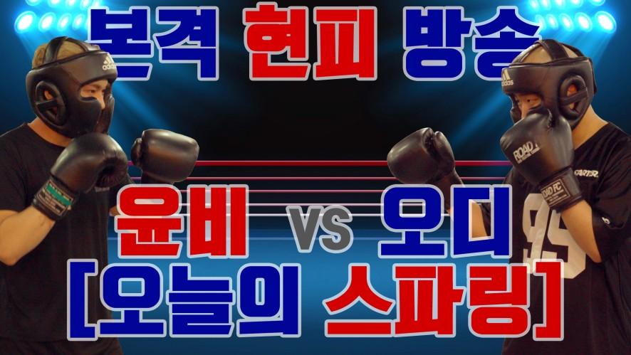 [오늘의 스파링] 윤비 VS 오디 (Episode 1)