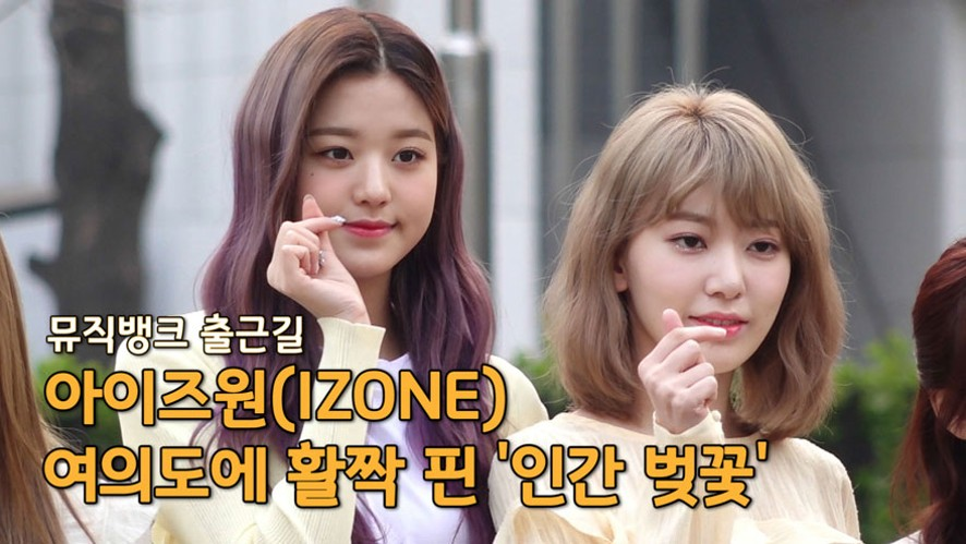 아이즈원(IZONE), 여의도에 활짝 핀 '인간 벚꽃' ('뮤직뱅크' 출근길)
