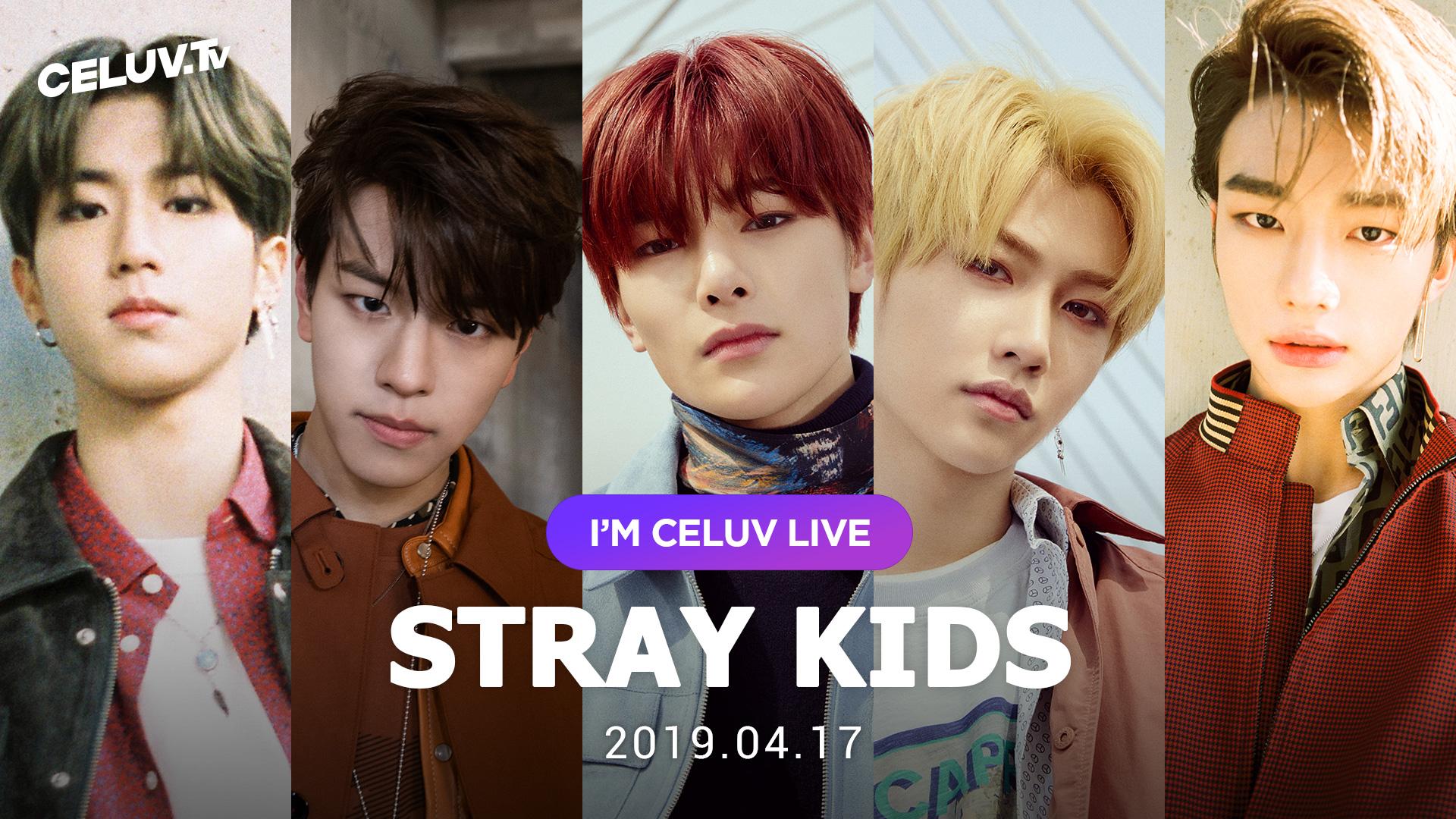 [I'm Celuv] Stray Kids(현진,승민,한,필릭스,아이엔), 패기 넘치는 소년들의 열정으로 (Celuv.TV)