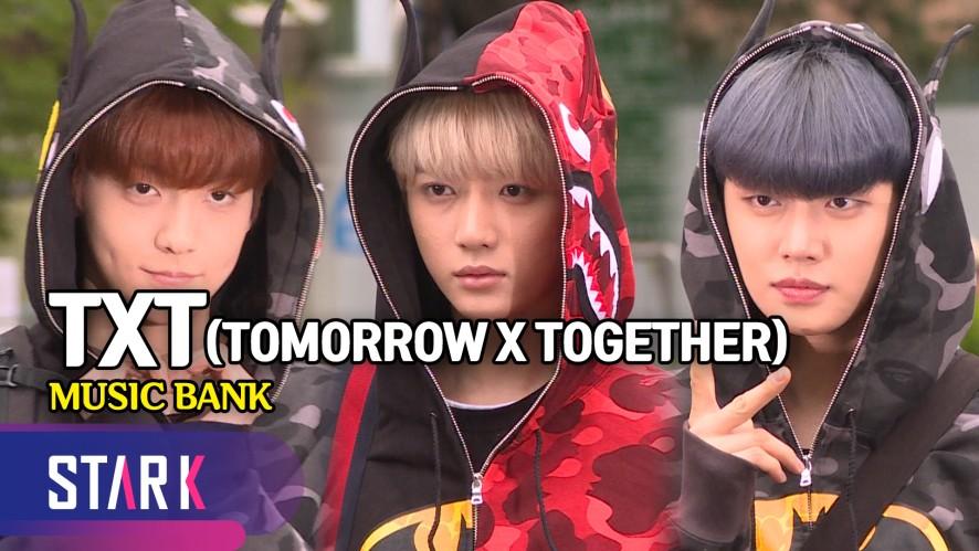 귀여운 5명의 악동 투모로우바이투게더 (TOMORROW X TOGETHER, MUSIC BANK)