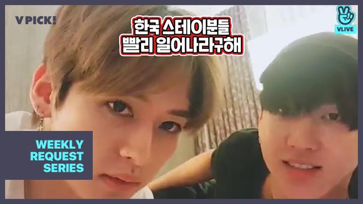 [Stray Kids] 주말 아침 7시17분 한국 스테이들 모두 슼모닝😆❤️ (LEE KNOW&CHANGBIN talking with fans)