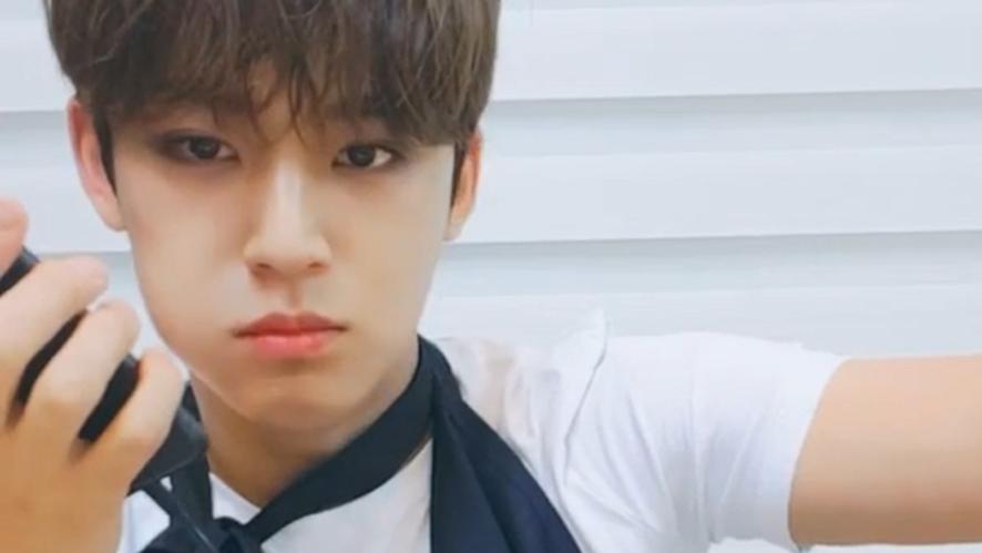 "[SEVENTEEN] 🦀김얼왜열, ""먹고 싶은 거 먹으려고 열심히 사는 것""🍖 (Mingyu's eating show)"